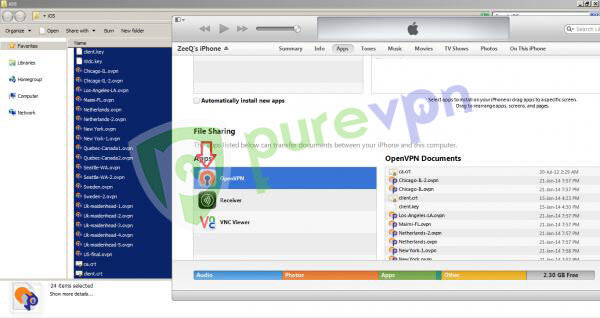 PureVPN's OpenVPN files